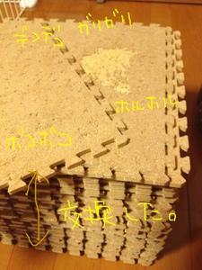 20121110-122109.jpg