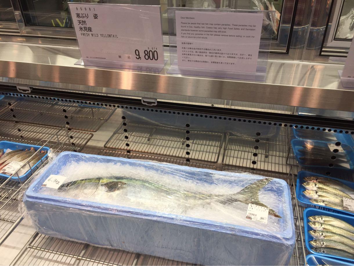 コストコ射水倉庫店