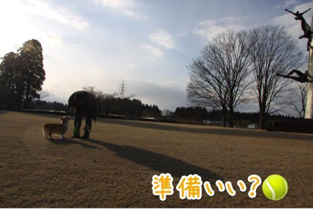 太閤山ランドでお散歩