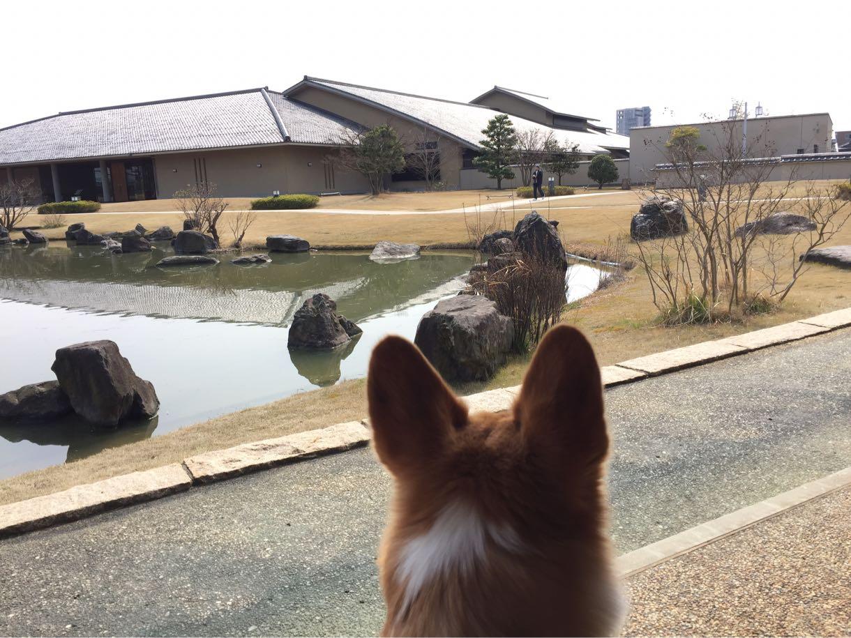 しめじと五福山水苑