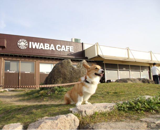 しめじと岩場カフェ
