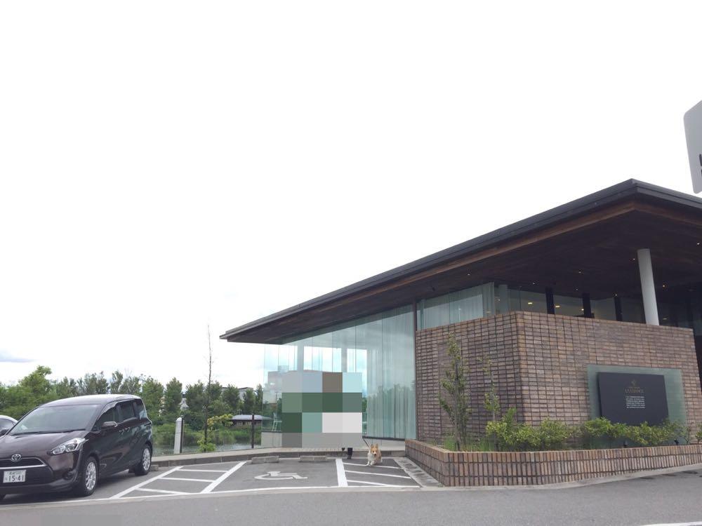 富山県美術館プロムナード