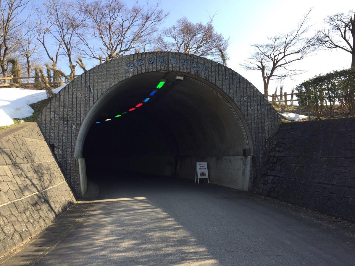 太閤山ランド やまぶきトンネル