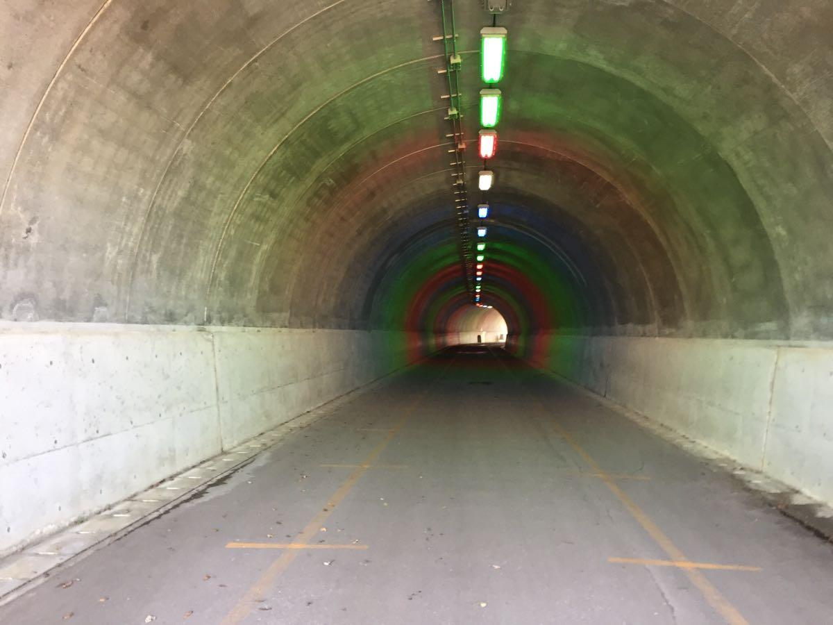 太閤山ランドやまぶきトンネル