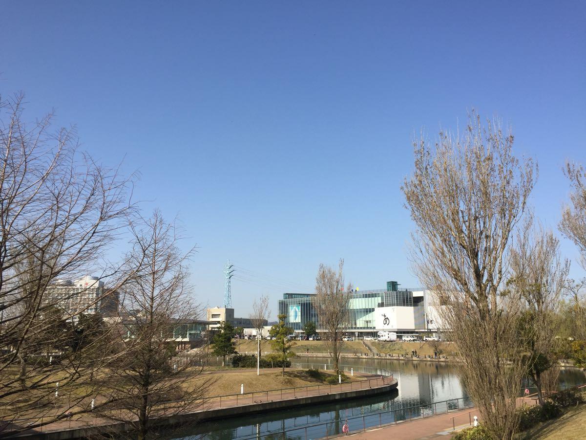 富山 富山環水公園 桜