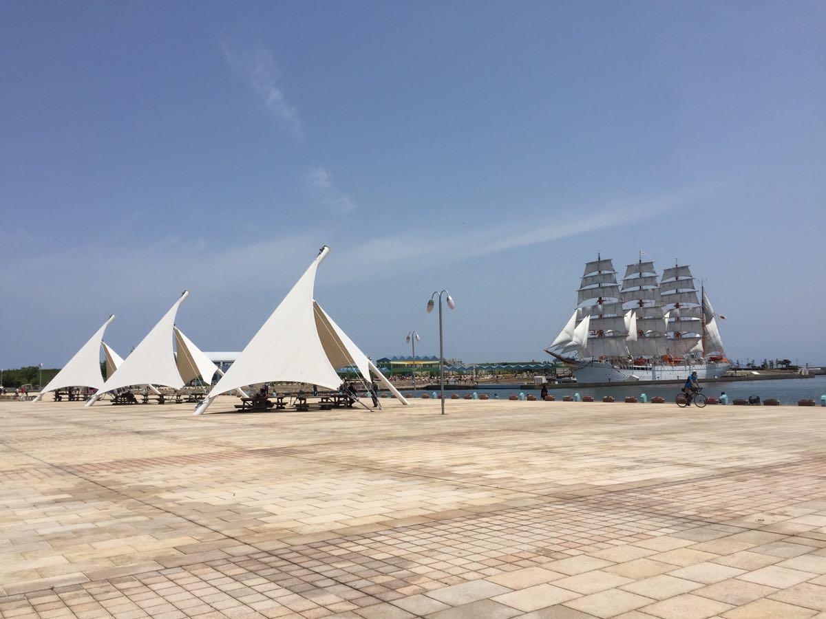 海王丸の総帆展帆
