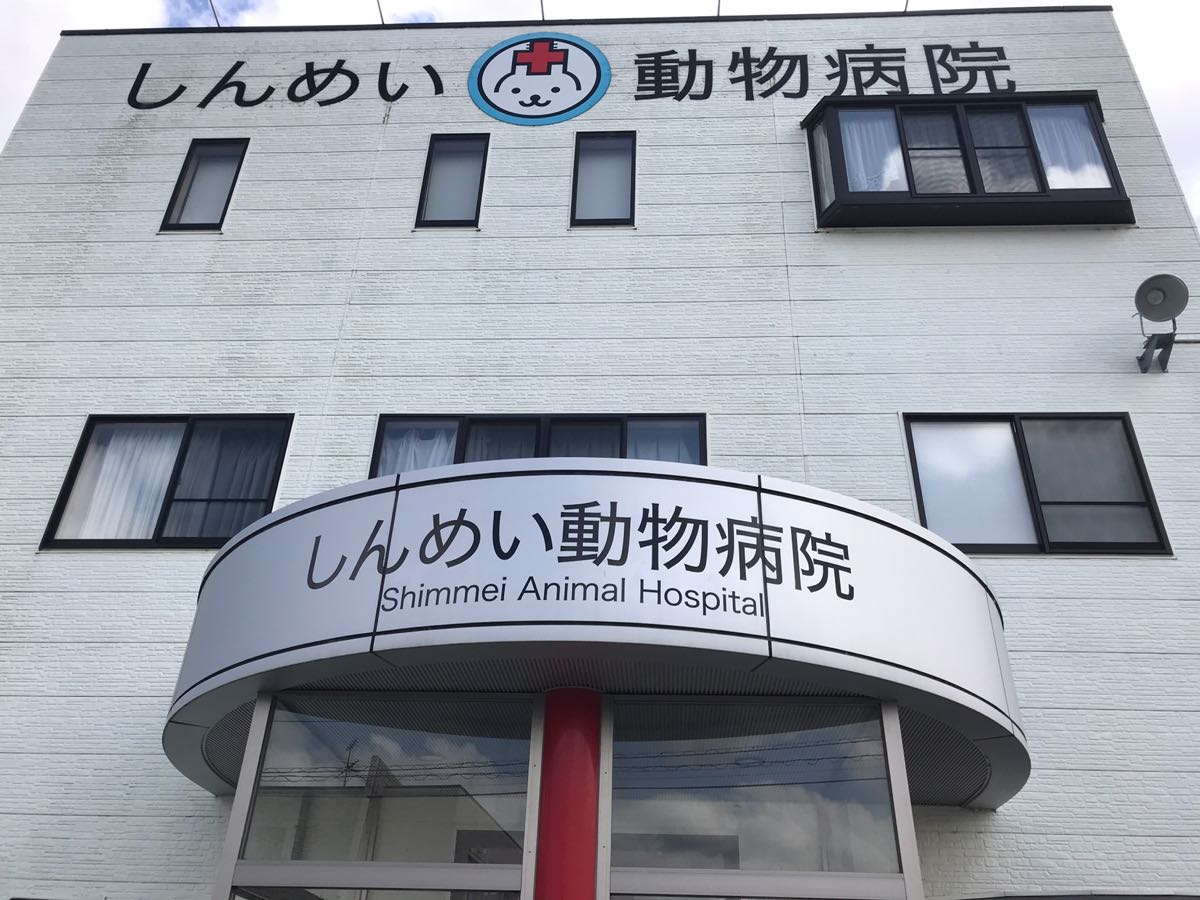 しんめい動物病院