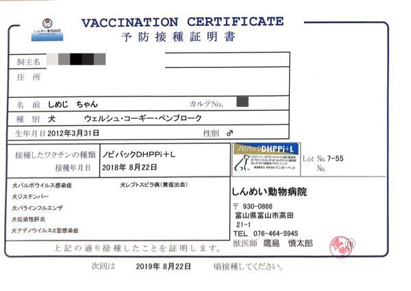 6種混合ワクチンの予防接種証明書