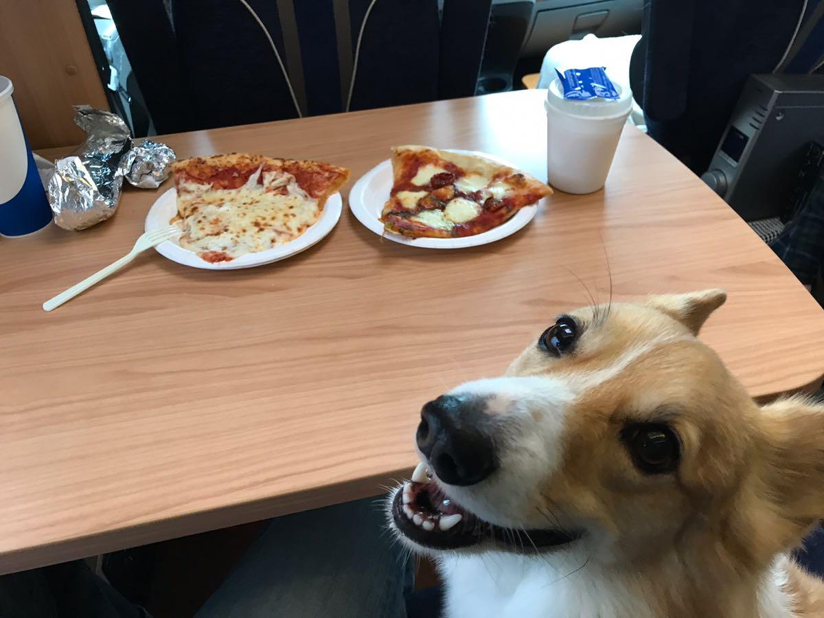 コストコでピザ