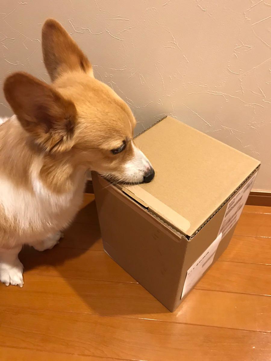 HomePodの箱
